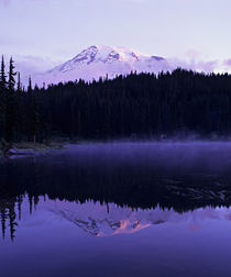 Rainier and it's reflection in Reflection Lake at dawn von Danita Delimont