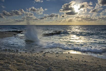 Crashing waves at sunset on the shore near George Town von Danita Delimont