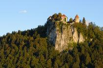 Bled Castle on hilltop by Danita Delimont
