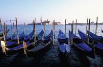 Row of Gondolas and San Giorgio Maggiore by Danita Delimont