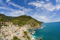 Hillside Town of Vernazza by Danita Delimont