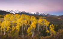 Dawn in the San Juan Mountains in fall von Danita Delimont