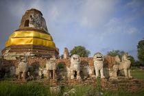 Singhat Wat Thammikarat by Danita Delimont