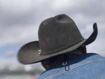 Cowboy hats in use at the Tucson Rodeo von Danita Delimont