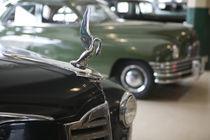 1940s Packard Hood Ornament by Danita Delimont