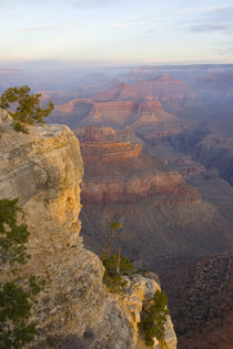 Sunrise at Yavapai Point by Danita Delimont