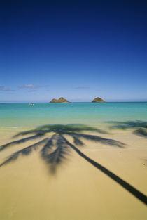 Lanikai Beach von Danita Delimont