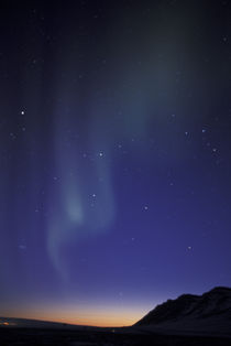Northern lights (aurora borealis); curtain of green light over Fortress Mountain by Danita Delimont