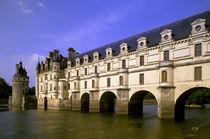 Chateau Chenonceaux by Danita Delimont