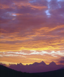 Sunset over the Sierra Nevada Mountains by Danita Delimont