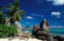 Anse Royale Beach by Danita Delimont