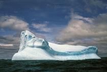 Iceberg von Danita Delimont
