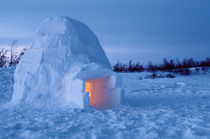 Arctic igloo with candle light inside von Danita Delimont