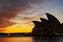 Sydney Opera House at Dawn by Danita Delimont