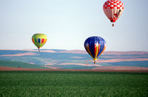 Colorful hot air balloons float over wheat fields in Walla Walla von Danita Delimont