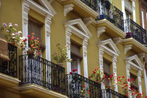 Andalucia Geraniums hang over iron balconies of traditional houses by Danita Delimont