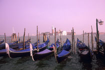 Gondolas ready for tourists in Venice Italy by Danita Delimont