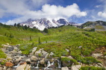 Edith Creek and wildflower meadows at Paradise in Mount Rainier National Park in Washington von Danita Delimont