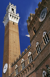 Torre del Mangia in Piazza del Campo von Danita Delimont