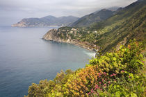 Coastal hiking area between the villages of Manarola and Corniglia in Cinque Terre by Danita Delimont