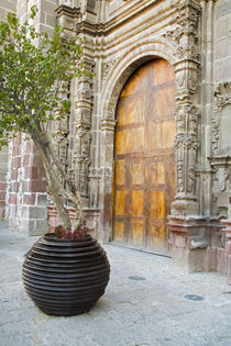 Entrance to the Templo de San Francisco by Danita Delimont