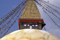 Bouddhanath Stupa by Danita Delimont