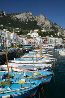 CAPRI: Marina di Caterola / Capri Town Port by Danita Delimont