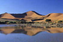 Sossusvlei Dunes by Danita Delimont