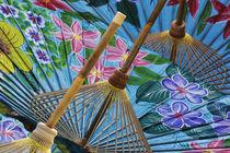 Thailand by Danita Delimont