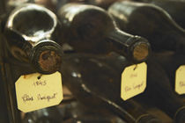 Two old bottles of Clos de Vougeot 1845 and one bottle from 1846 von Danita Delimont
