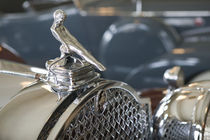 1930s Packard Hood Ornament by Danita Delimont