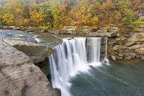 Cumberland Falls State Park near Corbin Kentucky von Danita Delimont