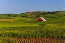 A scenic view of a barn in Moscow Idaho von Danita Delimont