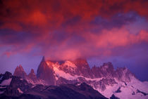 Cerro Fitz Roy by Danita Delimont
