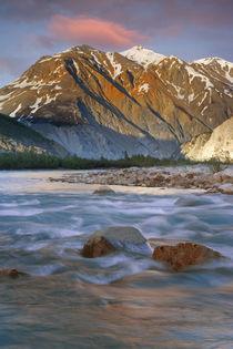 Alsek River Valley von Danita Delimont