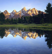Grand Teton Mountains reflecting in the Snake River at sunrise von Danita Delimont