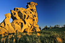 Medicine Rocks State Park near Ekalaka Montana von Danita Delimont