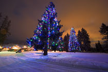 Amazing dusk light and Christmas lights at the Whitefish Lake Golf course in Whitefish Montana by Danita Delimont