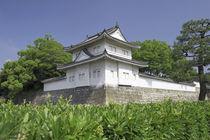 Nijo Castle von Danita Delimont