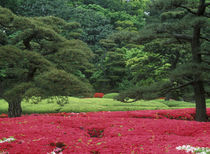 Japan von Danita Delimont