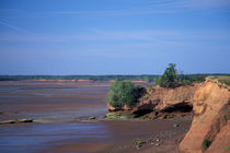 Bay of Fundy coastline von Danita Delimont
