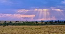 Sun setting on the Masai Mara by Danita Delimont