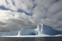 Afternoon sun lights massive tabular iceberg near Livingstone Island by Danita Delimont