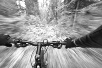 Cruising down a buff section of singletrack trail from the riders perspective near West Glacier Montana von Danita Delimont