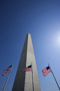 American flags at the Washington Monument von Danita Delimont