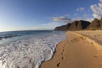 Beach landscape von Danita Delimont