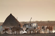 Village of Dinka ethnic group by Danita Delimont