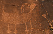 Prehistoric petroglyph rock art at Dinosaur National Monument von Danita Delimont