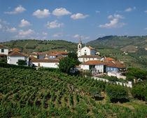 Portugal von Danita Delimont