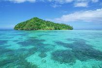 Micronesia by Danita Delimont